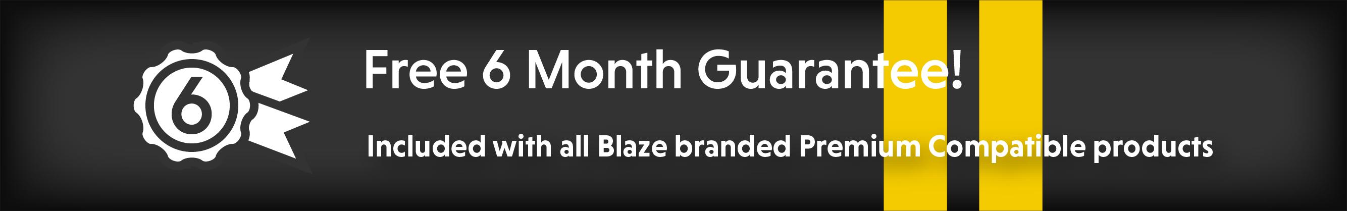 for projectors six month guarantee